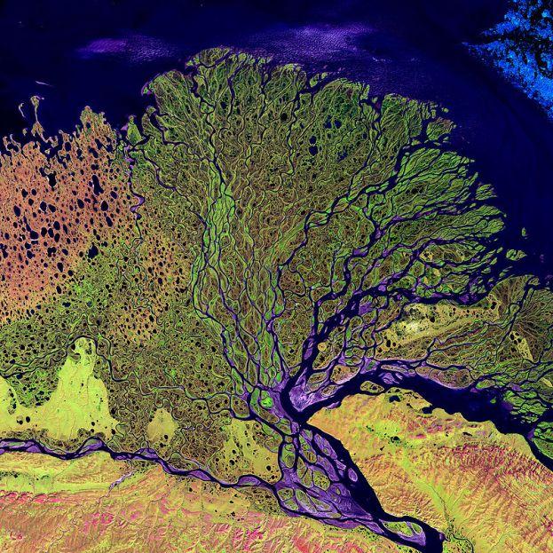 800px-Lena_River_Delta_-_Landsat_2000